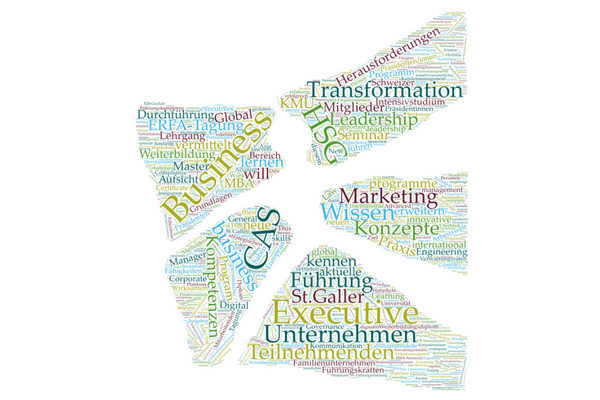 Executive Education at HSG wordcloud